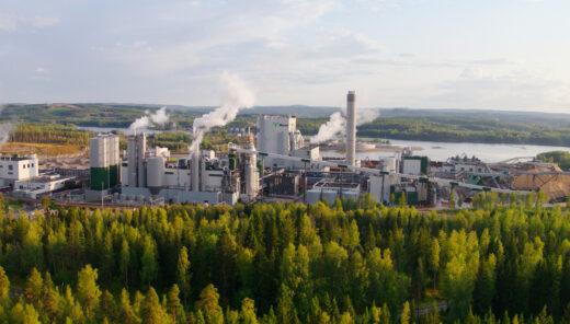 Biotaloudessa hyödynnetään uusiutuvia luonnonvaroja ja materiaaleja.